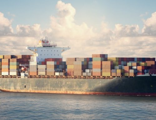 Port Delays, Additional Costs and Deteriorating Services